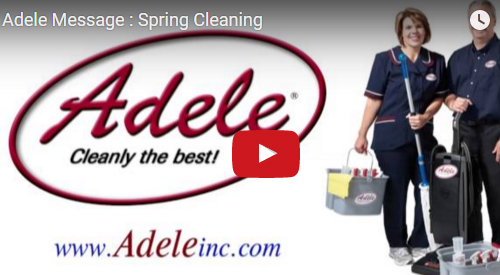 adele-spring-cleanning
